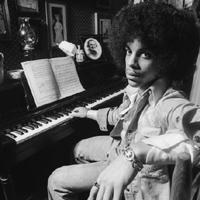 prince-piano_lui200