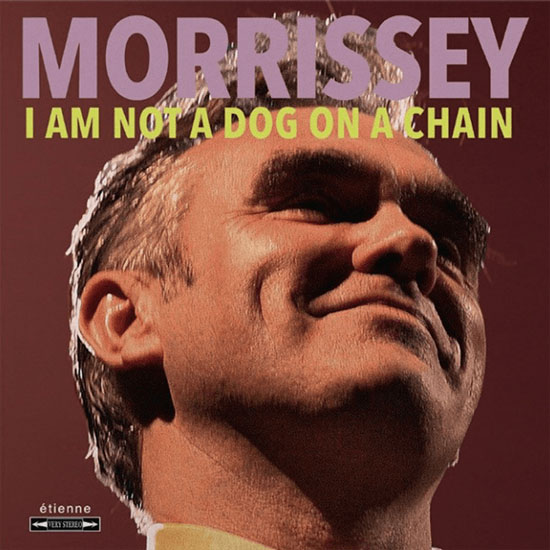 moz_dog_cover